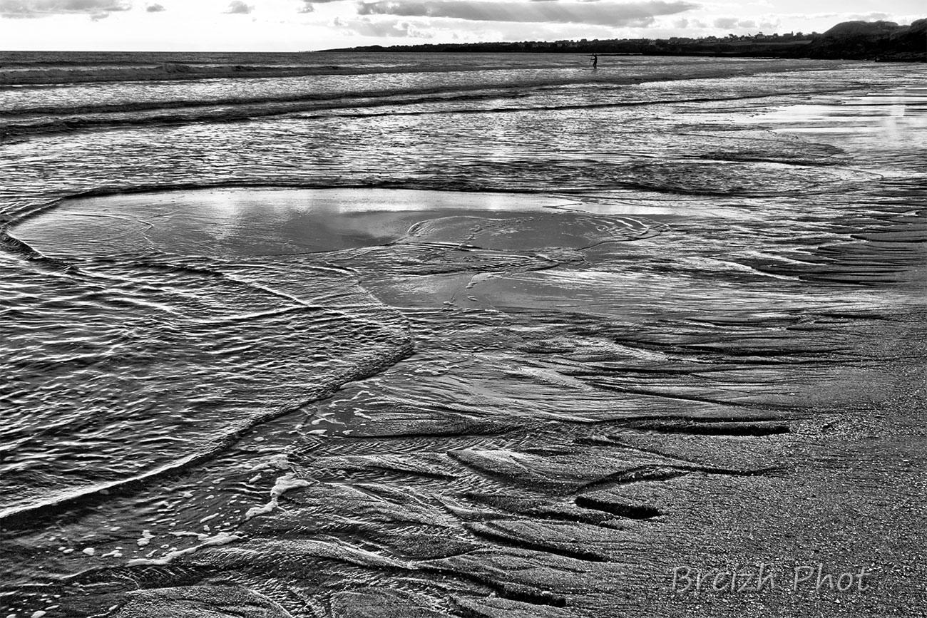 plage du loch - sculptures d'estran