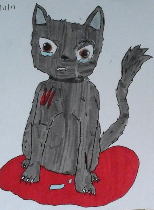 Voici un petit dessin, représentant un chat sortant blessé d'un combat