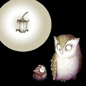oiseaux chouettes hiboux