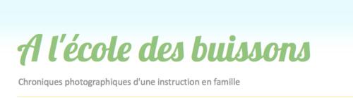 Blogs de familles IEF : À l'école des buissons