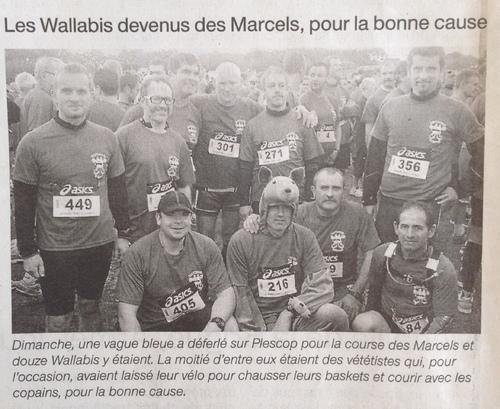 """Les """"Marcels à Plescop"""" - Revue de presse..."""