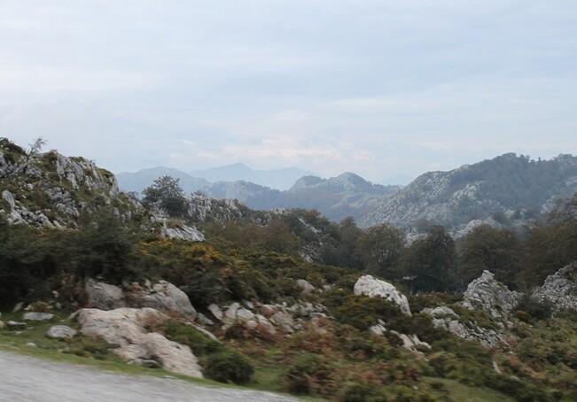 5 Sur la route du lac de Covadonga (48)