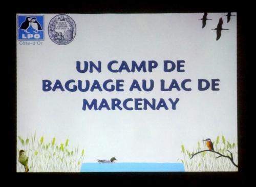 Le camp de baguage du lac de Marcenay...
