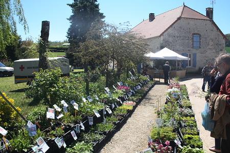 Bergères - Aube - 25ème Journée des plantes