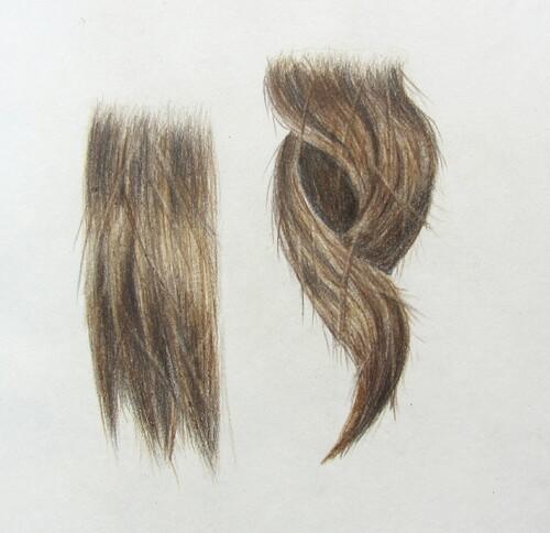 Elément de portait # 1 : Les cheveux