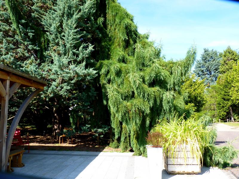 Le Jardin Jean-Marie Pelt à Villers-les-Nancy/3