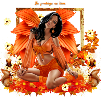 Ange Automne orange code inclus