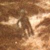La photographie de la lande d\'Ilkley (1987)