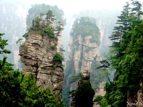Les paysages d'Avatar existent