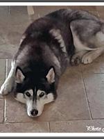 Lorca (4 ans)
