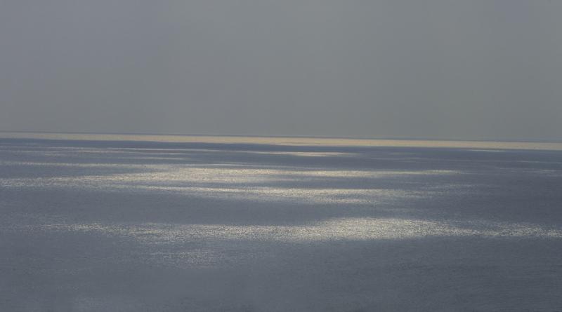 Au cœur de la marée  ...