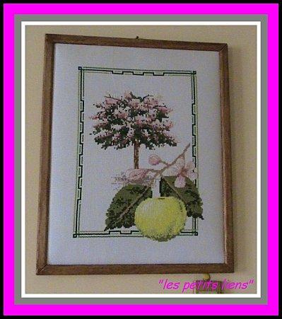 Série:Arbres & fruits .Pamlemousse