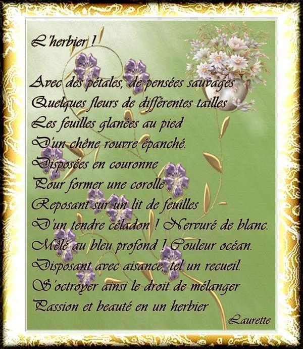 L'herbier...