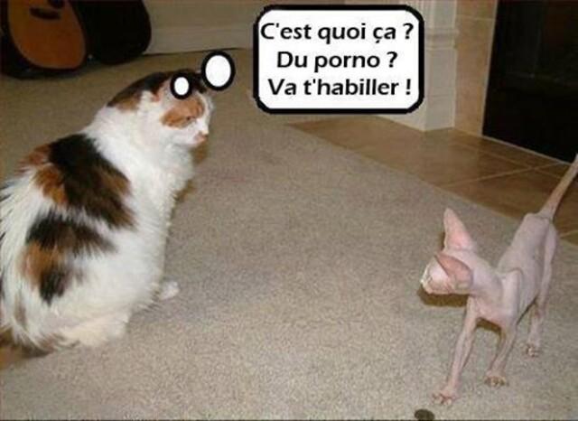 Humour en images...