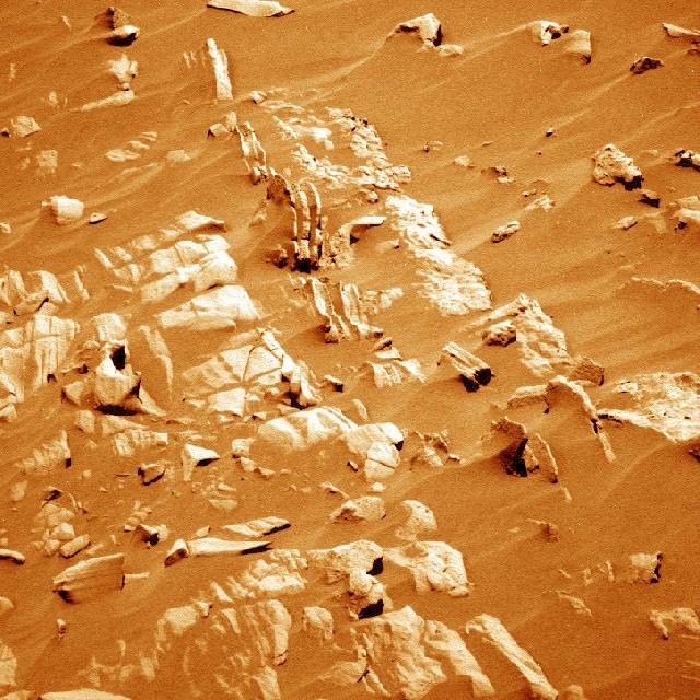 Détails du sol