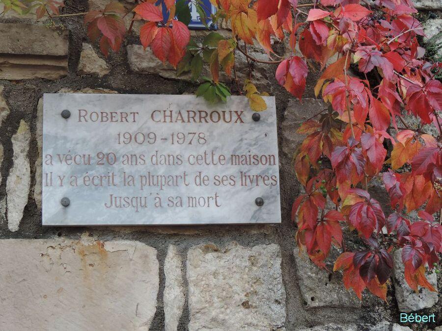 Charoux dept 86 (2)
