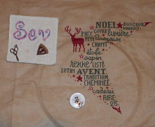 Etoile de Noel (1)