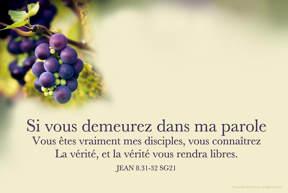 Verset Jean 14:6 dans Versets Bibliques IB8M-bJnf7yl-Zj4hndCs_2aDec