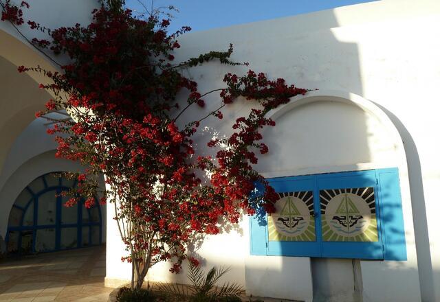 Joli endroit d'un grand hotel à Ajiim