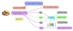 6-Duel entre le Fer et l'acide chlorhydrique