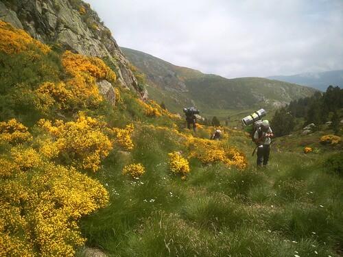 Cabane/bivouac (4 nuits) : vallon de Rieutort de Gascous (Aston) - 09