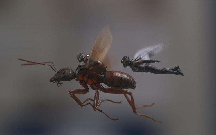 ANT MAN ET LA GUEPE