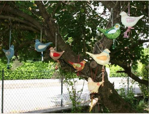 oiseaux aa r