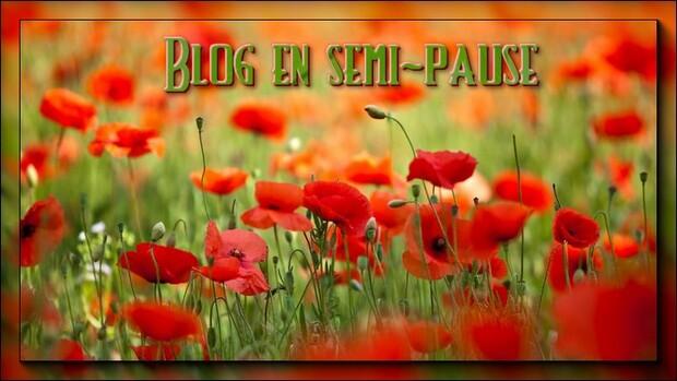 Blog en semi-pause !