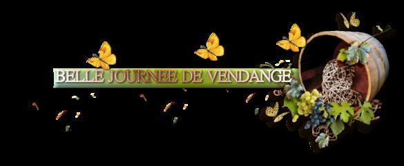 ♥ VENDANGES ♥