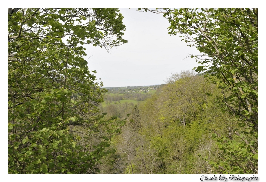 Cheylade - Cantal - Auvergne - 10 Mai 2015