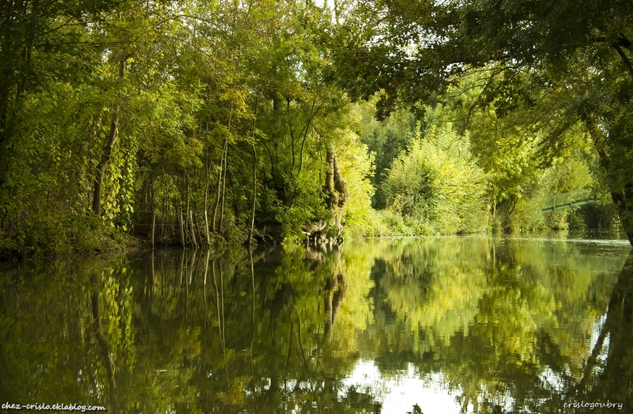 Le marais Poitevin (2)