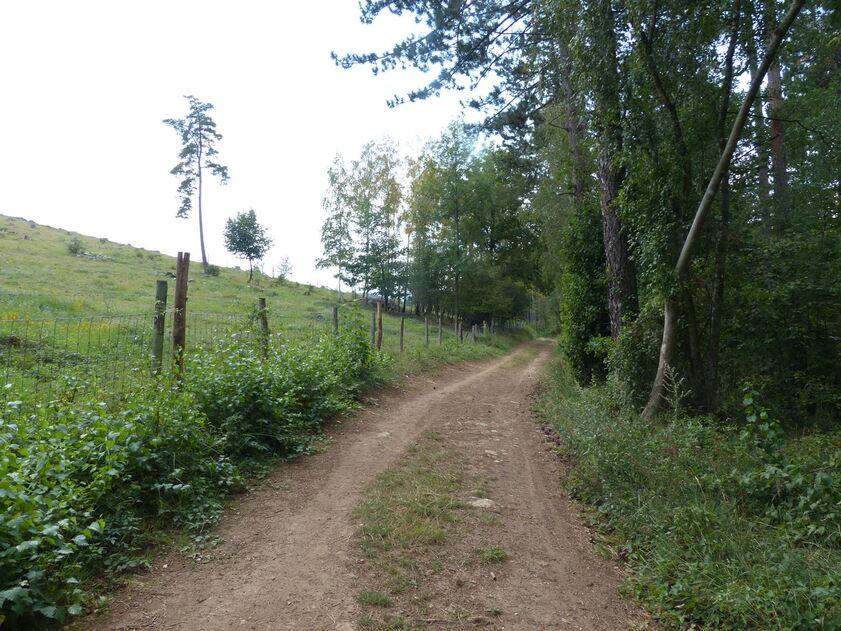 En escapade à la réserve naturelle du Mont des Pins altitude 271 m