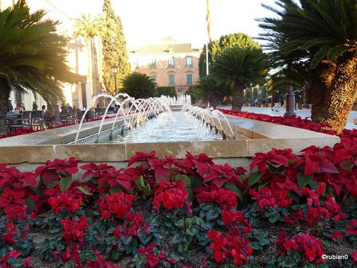 Jardin place de la mairie