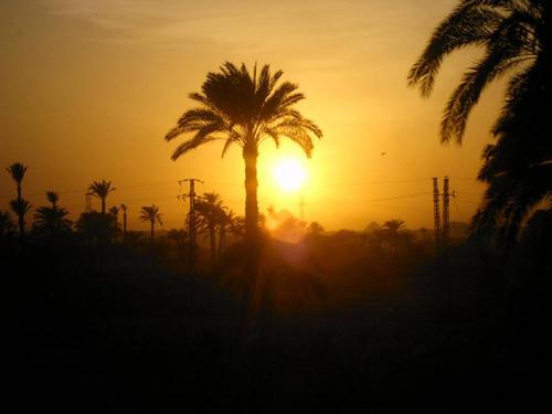 coucher-de-soleil-saqqara.JPG