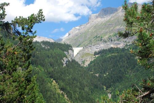 Haute Savoie (suite)