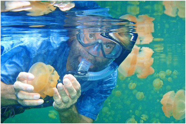 le lac aux méduses