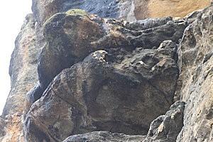 La Roque-Gageac(43)