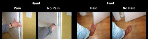 Quelques images montrées par PL. Jackson, AN. Meltzoff et J. Decety pour étudier l'empathie