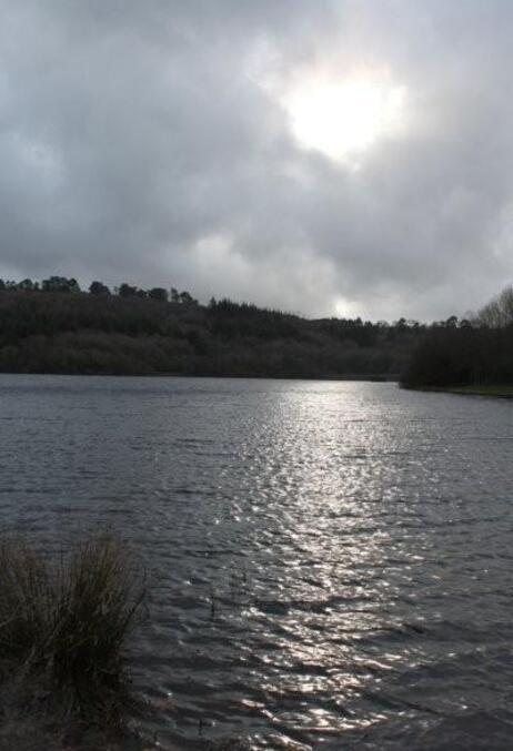 Au lac du Drennec (6)