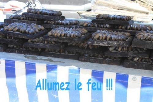 VIEUX GREEMENTS - LA GREVE - LA TREMBLADE (17)