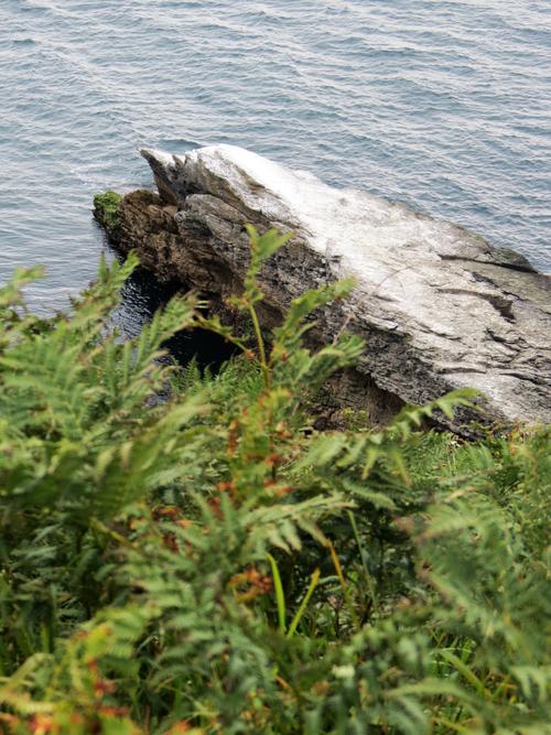 Escapade iodée à l'Île de Groix (Morbihan) - De Quelhuit à Pointe de Pen Men