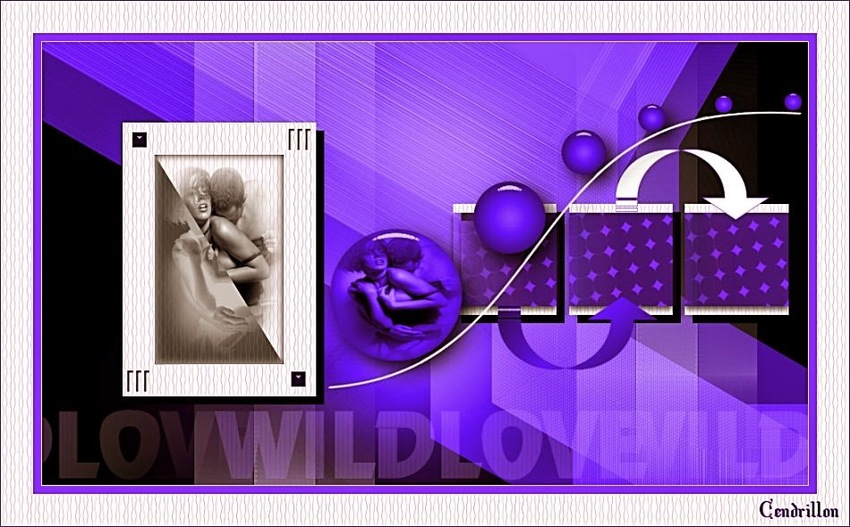 Wild Love - Tamer Crea - Traduction Les Douceurs de Cloclo