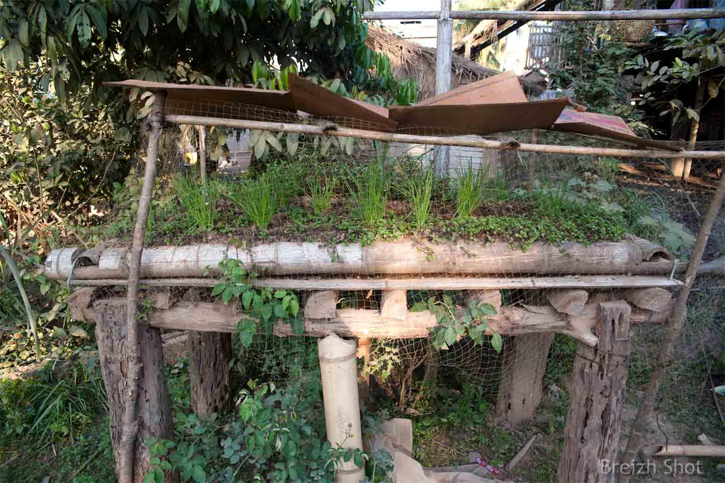 Jardin Sur Pilotis