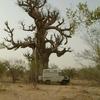 baobab-hamoud-piste