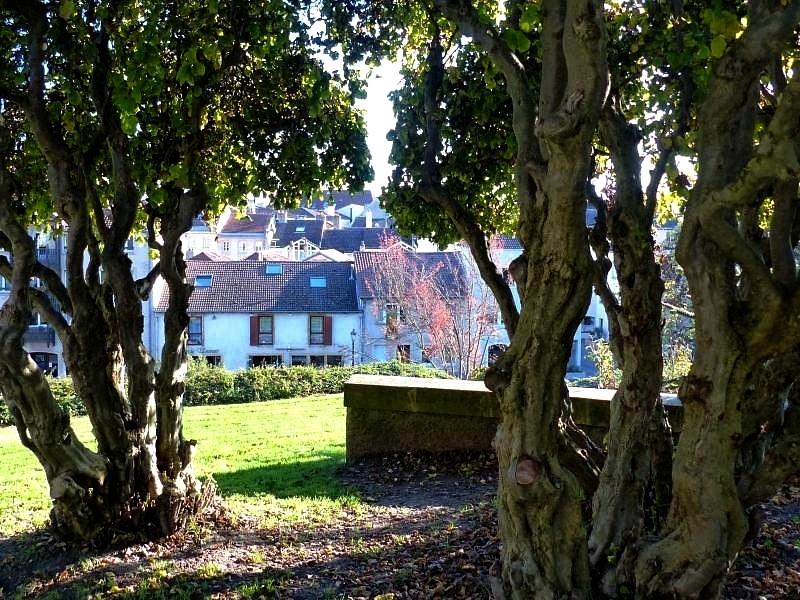 Metz / Le Jardin des Tanneurs est l'un de nos raccourcis d'automne...