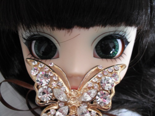 ChôChô ~ Butterfly