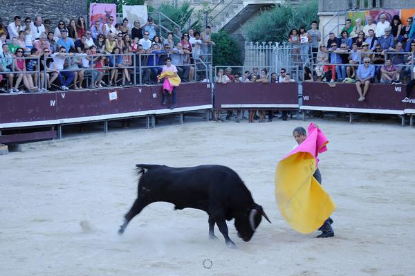 Lucien Chinito torero