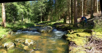 En petit saute-ruisseaux, dans la haute Dourbies.