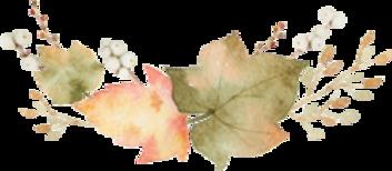 diviseurs d'automne