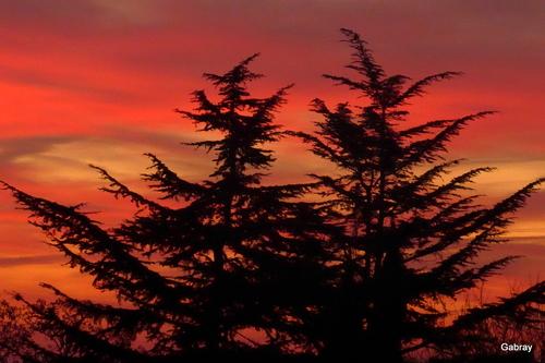 Ciel d'un soir en fin décembre...